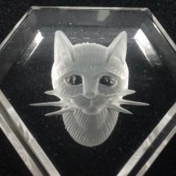 Poes in bergkristal 2,6 cm
